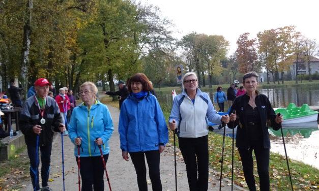 Zapraszamy na zajęcia nordic walking