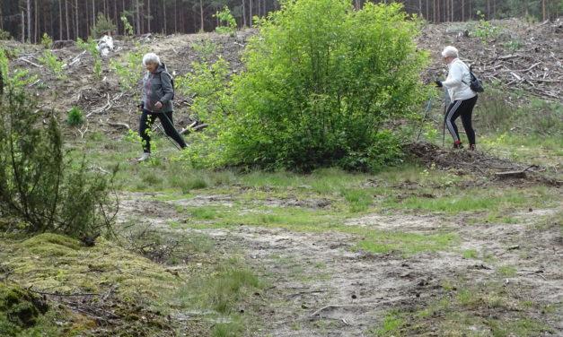 [2020.05.20] Testowanie nowej trasy w Białasach